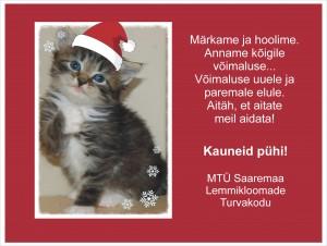 jõulukaart Liisupojaga